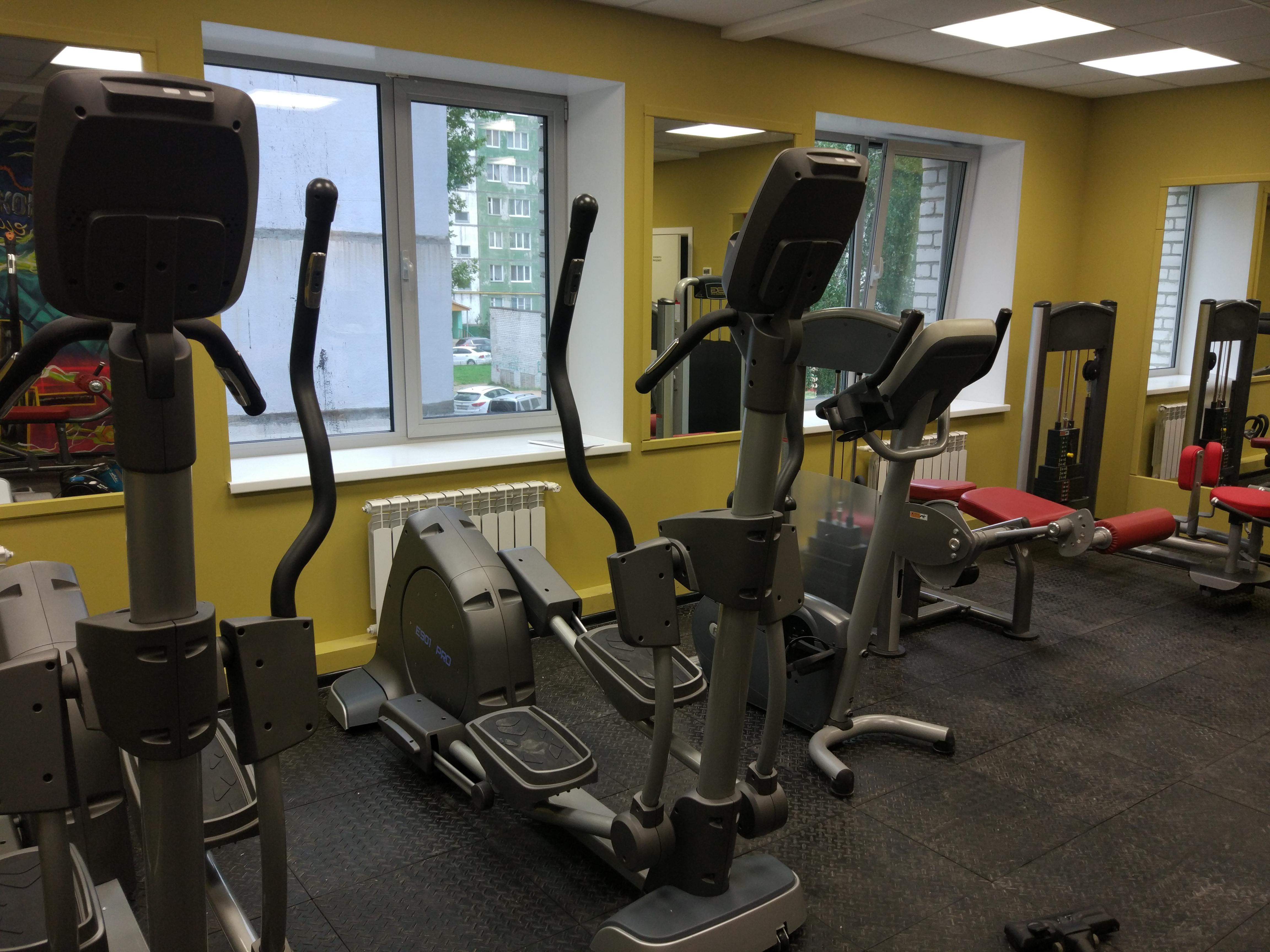 Bronze Gym E901